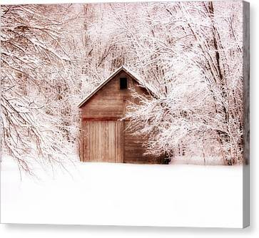 Tucked Away Canvas Print by Julie Hamilton