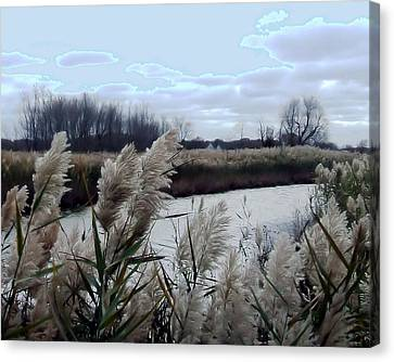 Tucked Away Canvas Print by Natalie Bollinger