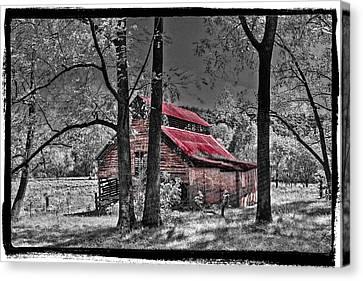 Tucked In Canvas Print by Debra and Dave Vanderlaan