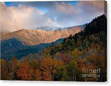Tuckermans Ravine In Autumn Canvas Print by Susan Cole Kelly