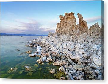 Mono Lake - Tufa Canvas Print by Francesco Emanuele Carucci
