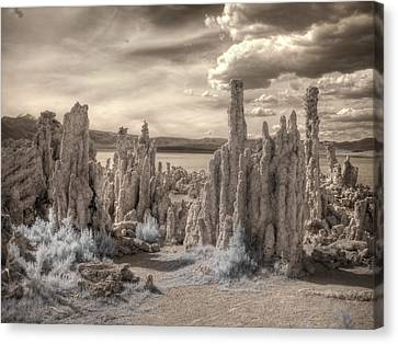 Surreal Infrared Sepia Nature Canvas Print - Tufa Mono Lake California Infrared Surreal Sepia by Jane Linders