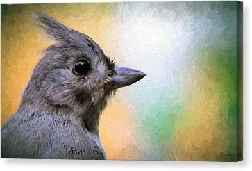 Tufted Titmouse Canvas Print by Diane Giurco