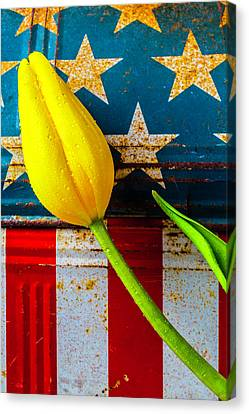 Tulip And Old Lunch Box Canvas Print by Garry Gay