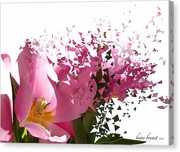 Tulip Blast Canvas Print