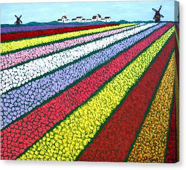 Tulip Fields Canvas Print by Frederic Kohli