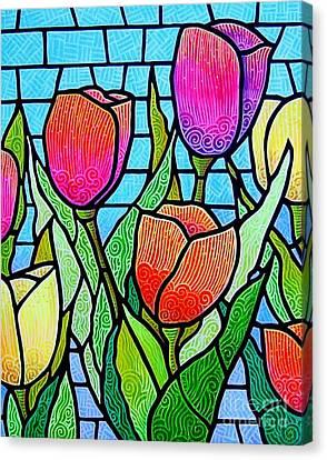 Tulip Garden Canvas Print by Jim Harris