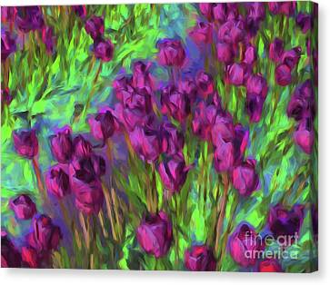 Tulip Perspective Canvas Print by Cheryl Rose