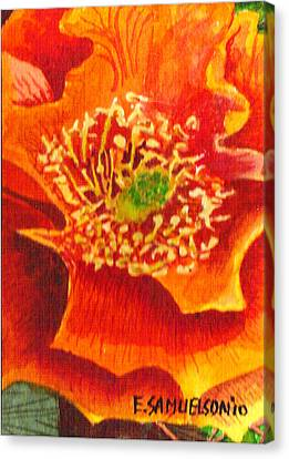 Tulip Prickly Pear Canvas Print by Eric Samuelson