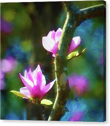 Canvas Print featuring the photograph Tulip Tree by James Barber