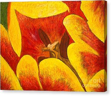 Tulipan Anaranjado Canvas Print by Karla Kernz