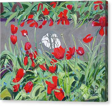 Tulips And Reflection Canvas Print by Andrew Macara