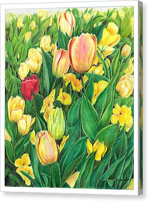 Tulips From Amsterdam Canvas Print by Jeanette Schumacher