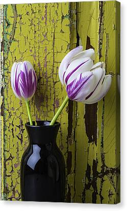 Tulips In Black Vase Canvas Print