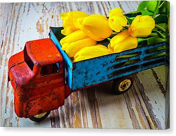 Tulips In Toy Truck Canvas Print