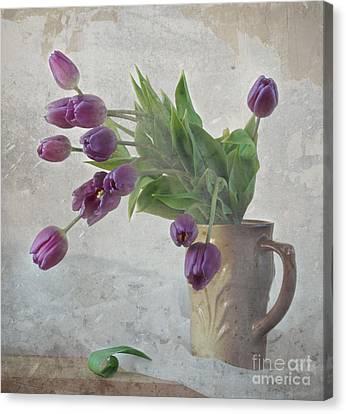 Tulips Canvas Print by Irina No