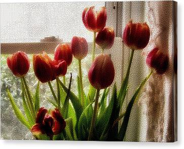 Tulips Canvas Print by Karen Scovill