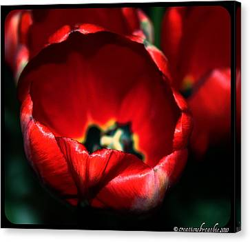 Tulips Of Love Canvas Print by Cathie Tyler