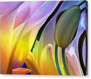 Tulips Secret Canvas Print