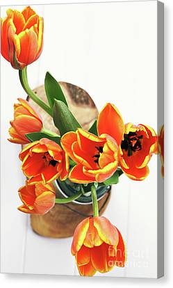 Canvas Print featuring the pyrography Tulips by Stephanie Frey