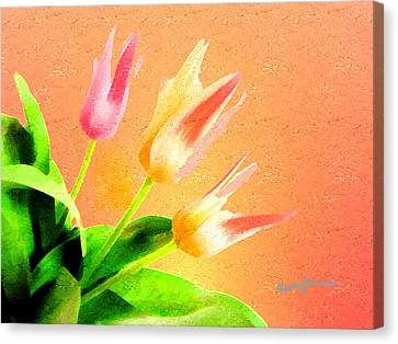 Tulips Three Canvas Print by Anthony Caruso