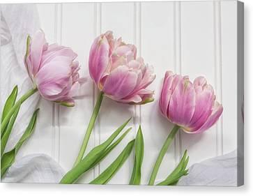 Canvas Print - Tulips Three by Kim Hojnacki