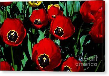 Canvas Print featuring the photograph Tulips by Vanessa Palomino