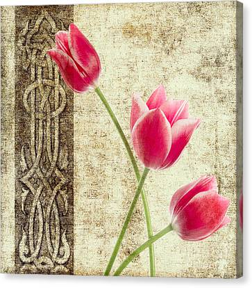 Tulips Vintage  Canvas Print