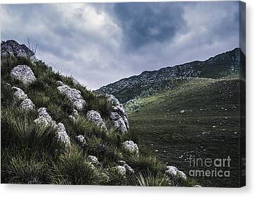 Tullah And Queenstown Rock Valley Landscape  Canvas Print by Jorgo Photography - Wall Art Gallery