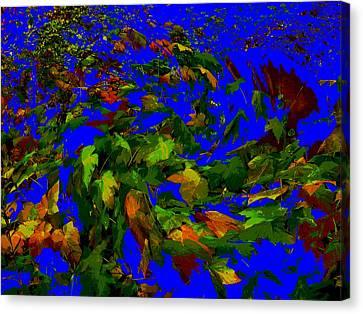 Tumbled Thimble Berry Canvas Print by Anne Havard