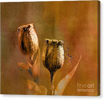 Tumbling Canvas Print by Nick Eagles