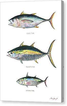 Tuna Fishes Canvas Print