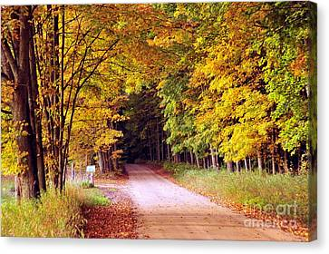 Tunnel Ahead Canvas Print by Terri Gostola