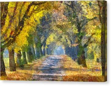 Tunnel Canvas Print by Judy Coggin