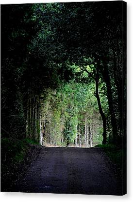 Tunnel Vision Canvas Print by Odd Jeppesen