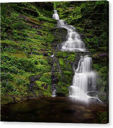 Tunxis Forest Waterfall Square Canvas Print by Bill Wakeley