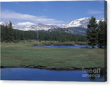 Canvas Print featuring the photograph Tuolomne Meadows In June by Stan and Anne Foster