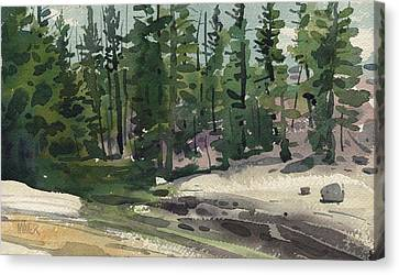 Tuolumne River Canvas Print by Donald Maier