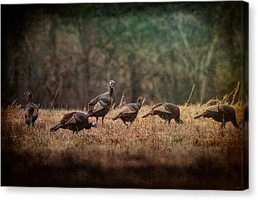 Turkey Day At Grandpas Farm Canvas Print by Jai Johnson