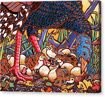 Turkeys Canvas Print by Nadi Spencer