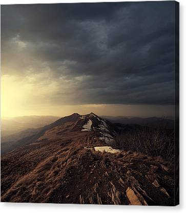 Turn To Light Canvas Print by Michal Karcz