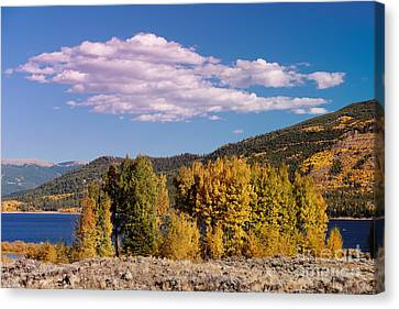 Turning Aspens And Wandering Clouds - Twin Lakes Arkansas River Valley - Rocky Mountains Colorado Canvas Print by Silvio Ligutti