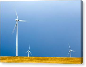Turning In The Wind Canvas Print