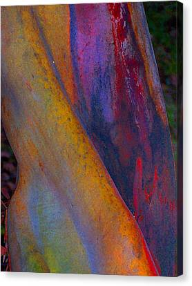 Turning Point Canvas Print by Richard Laeton