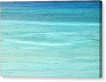 Turquoise Blue Carribean Water Canvas Print by James Forte