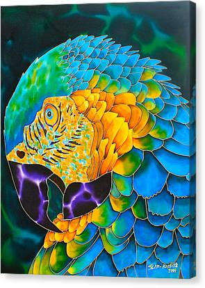 Tropical Bird Postcards Canvas Print - Turquoise Gold Macaw  by Daniel Jean-Baptiste