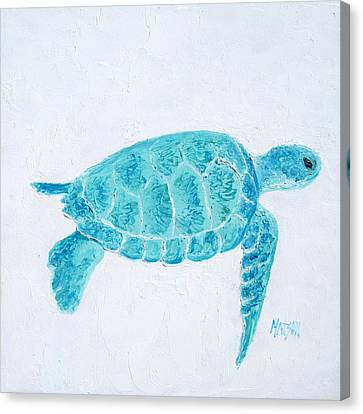 Turquoise Marine Turtle Canvas Print by Jan Matson