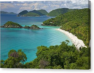 Turquoise Water At Trunk Bay, St. John Canvas Print by Michael Melford