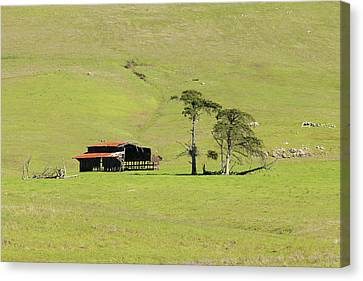 Canvas Print featuring the photograph Turri Road - San Luis Obispo Ca by Art Block Collections