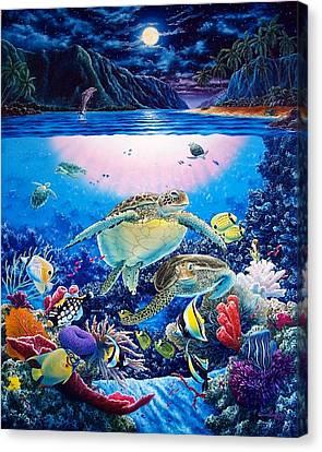 Turtle Bay Canvas Print by Daniel Bergren